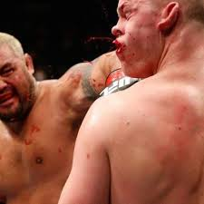 mark hunt analysis