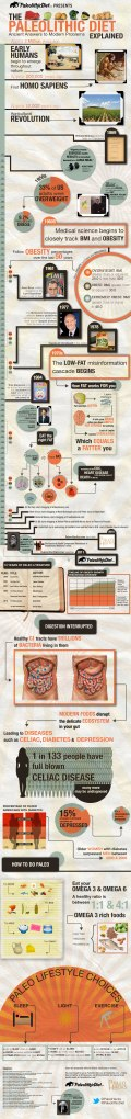paleolithic-diet-explained-infographic