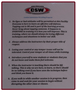 CSW lessons