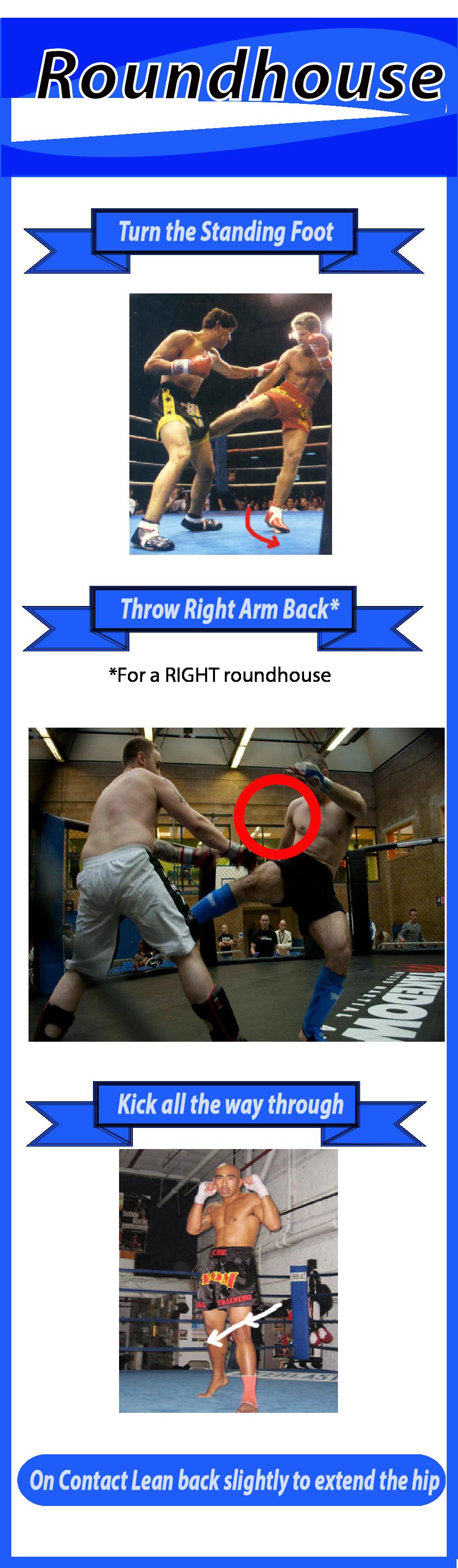 Roundhouse Kick technique