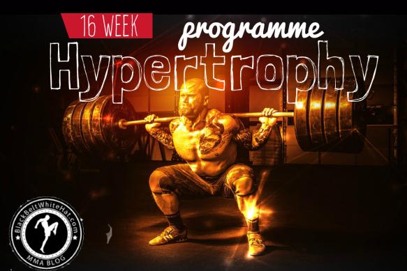 Joe Rogan' Workout – Strength & Hypertrophy Program ( pdf